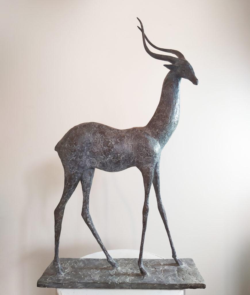 Pierre Yermia - Gazelle du Désert